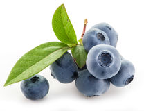 Ripe blueberries . Royalty Free Stock Image