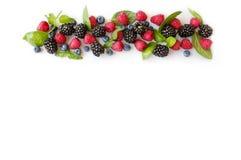 Ripe blueberries, raspberries and blackberries. Various fresh summer berries. Ripe blueberries, raspberries and blackberries. Berries on white background. Top Royalty Free Stock Photos