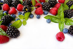 Ripe blueberries, raspberries and blackberries. Various fresh summer berries. Ripe blueberries, raspberries and blackberries. Berries on white background. Top Stock Photography