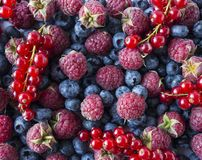 Ripe blueberries, raspberries and red currants. Mix berries and fruits. Top view. Background berries. Various fresh summer fruits. Red and blue food. Fresh stock images