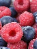 Ripe blueberries and rasperries. Natural organic berries Royalty Free Stock Photos