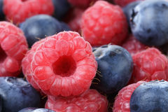 Ripe blueberries and rasperries. Natural organic berries Stock Photos