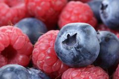 Ripe blueberries and rasperries Royalty Free Stock Photos