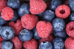 Ripe blueberries and rasperries. Natural organic berries Royalty Free Stock Image
