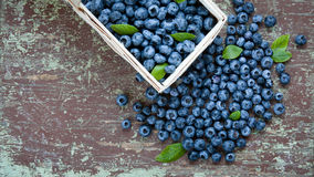 Ripe blueberries on table Stock Photography