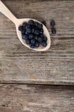 Ripe blueberries Royalty Free Stock Image
