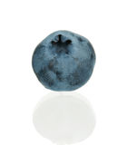 Ripe blueberry Royalty Free Stock Photography