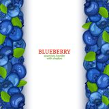 Ripe blueberry fruit vertical seamless borders. Vector illustration card Wide and narrow endless strip with blue berry. For design of food packaging juice royalty free illustration