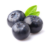 Ripe blueberry with leaves. In closeup Stock Images