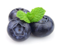 Ripe blueberry with mint Royalty Free Stock Image