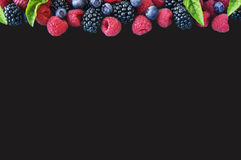 Ripe blueberry, raspberry and blackberry with basil leaves. Various fresh summer berries isolated on black background. Ripe blueberry, raspberry and blackberry Stock Photos