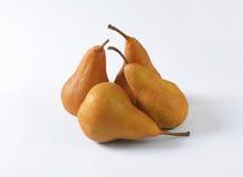 Ripe Bosc pears Royalty Free Stock Photo
