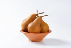 Ripe Bosc pears Royalty Free Stock Photos