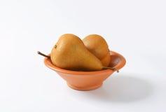 Ripe Bosc pears Stock Image