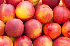 Ripe bright peach close up. Royalty Free Stock Images