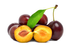 Ripe bright plums Stock Photos