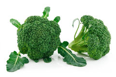 Ripe Broccoli Cabbage Isolated on White Stock Image