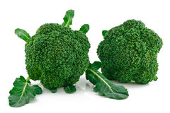 Ripe Broccoli Cabbage Isolated on White Royalty Free Stock Image