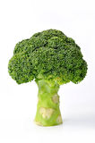 Ripe Broccoli Cabbage Royalty Free Stock Photography
