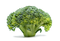 Ripe Broccoli Cabbage Isolated on White Background.  Stock Photo
