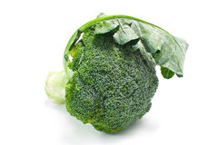Ripe Broccoli Cabbage  on White Stock Photos