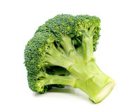 Ripe Broccoli Cabbage  on White Background. 。 Royalty Free Stock Photography