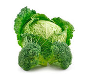 Ripe Broccoli and Savoy Cabbage Isolated on White Stock Images