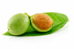 Free Ripe Broken Walnuts With Green Leaves Isolated Royalty Free Stock Photo - 10835225