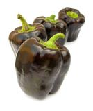 Ripe brown peppers Stock Images