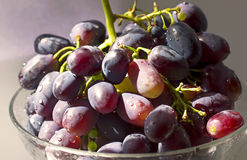 Ripe bunch of grapes in a transparent bowl closeup Stock Images