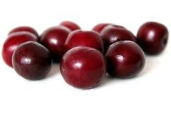 Deep red cherries on white background бордовые вишни на белом фоне stock photography
