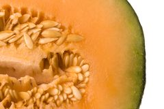 Ripe cantaloupe Royalty Free Stock Images