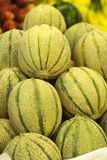 Ripe cantaloupes Stock Photos
