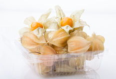 Ripe cape gooseberry or physalis. Heaps of Physalis in a plastic container Royalty Free Stock Photo
