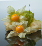 Ripe cape gooseberry, physalis isolated on  grey background with some peeled Stock Photography