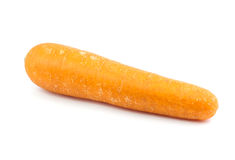 Ripe carrot Royalty Free Stock Photography