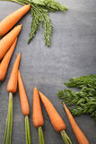 Ripe carrots. Fresh and ripe carrots on grey wooden table Royalty Free Stock Image