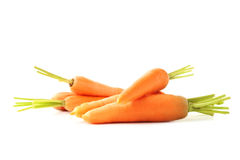 Ripe carrots. Fresh and ripe carrots isolated on white Royalty Free Stock Images