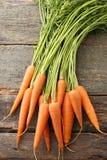 Ripe carrots Royalty Free Stock Photo