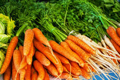 Ripe carrots and greens Royalty Free Stock Image