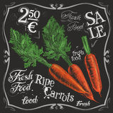 Ripe carrots vector logo design template.  fresh Royalty Free Stock Photo