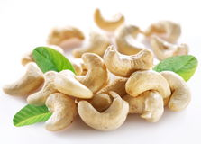 Ripe cashew nuts. Royalty Free Stock Photography