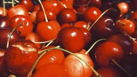 Ripe cherries Stock Photography