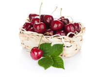 Ripe cherries basket Stock Images