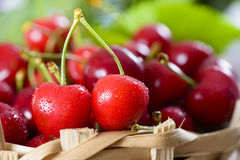 Ripe cherries in a Basket Royalty Free Stock Image
