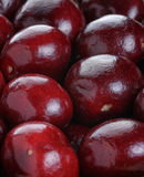 Ripe cherries close up Royalty Free Stock Image