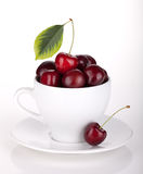 Ripe cherries in a coffee cup Royalty Free Stock Images