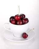 Ripe cherries in a coffee cup Stock Photography