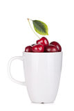 Ripe cherries in a cup. On white background Royalty Free Stock Photography