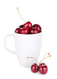 Ripe cherries in a cup. Isolated on white background Stock Photography